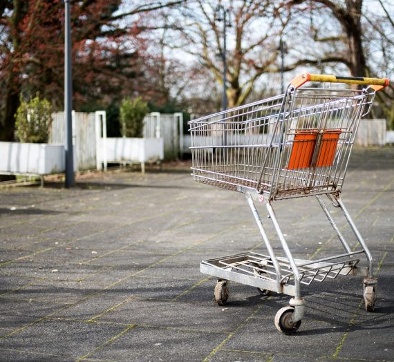 The Business of Grocery Stores