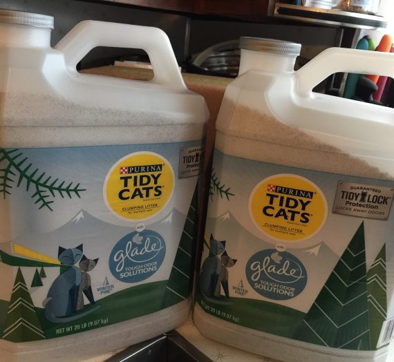Tidy Cats Tough Odor Solutions Glade Winter Pine #ChewyInfluencer