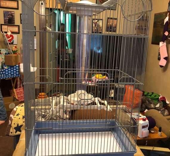 Bird Central Parakeet & Finch Cage From Ware Pet Products