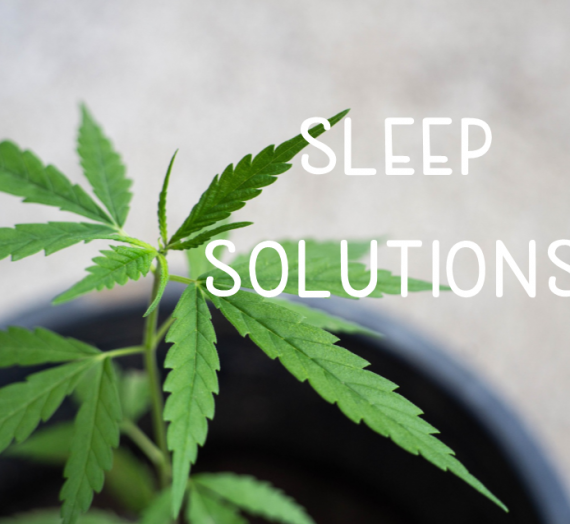 Sleep Solutions 2020 CBD Product Guide