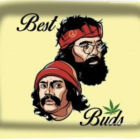 Cheech and Chong Best Buds Rolling Tray - My Rolling Tray